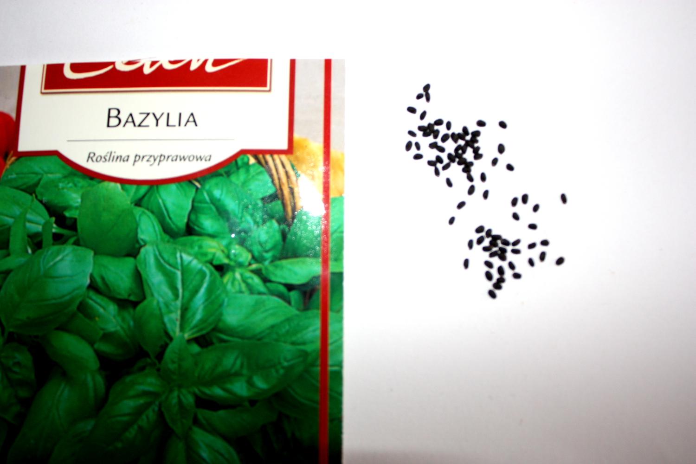 Nasiona bazylii