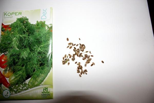 Nasiona kopru